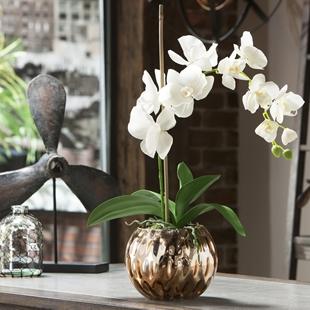 Save 40% - Select Home Decor