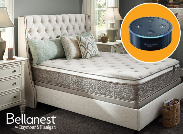 Buy Bellanest and receive a free Echo Dot.