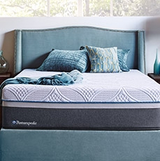 Free Box Spring with Sealy Hybrid mattress purchase