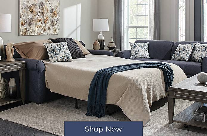 Shop Sleeper Sofas