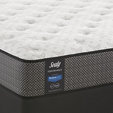 Free Gift - with select Sealy mattress purchases