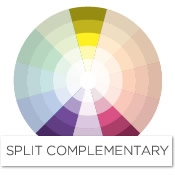 To Find The Split Complement Of Yellow Look Left And Right Its Purple In Case Complementary Scheme Would
