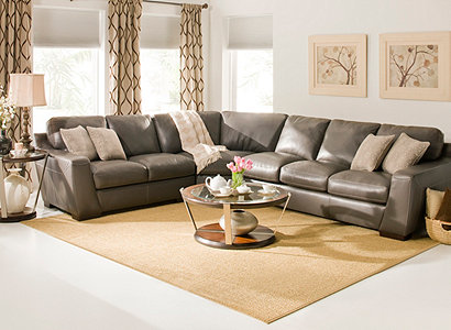 Carpenter Contemporary Leather Living Room Collection Design Tips & Ideas